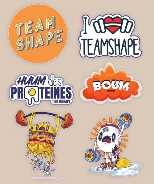 Lot de 6 Stickers Collector